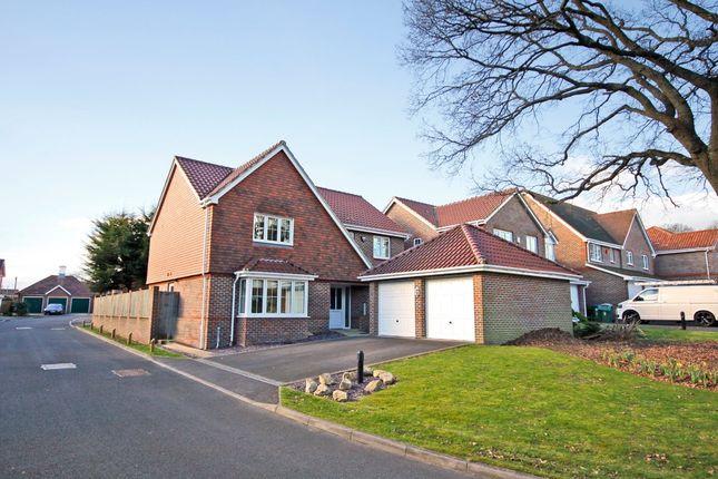 Thumbnail Detached house for sale in Stillmeadows, Locks Heath, Southampton