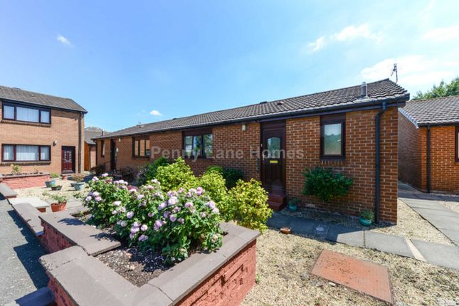 Thumbnail Semi-detached bungalow for sale in The Haining, Renfrew