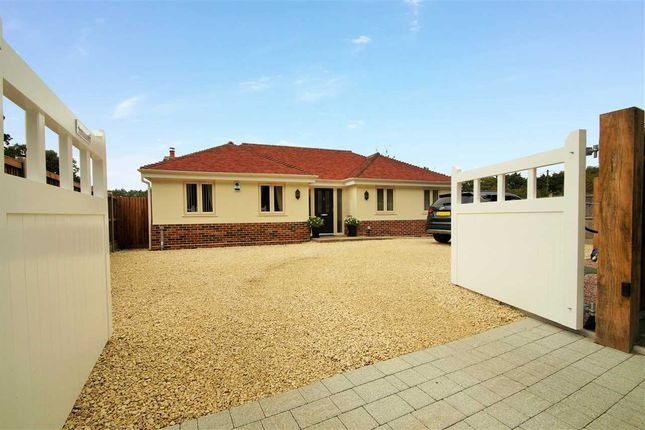 Thumbnail Bungalow for sale in Beechtree Lodge, Chapel Lane, Crockleford Heath, Colchester