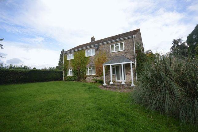 Thumbnail Property to rent in Main Road, Bishop Sutton, Bristol