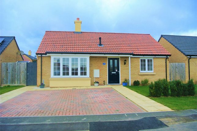 Thumbnail Detached bungalow for sale in Mayfield Gardens, Baston, Peterborough, Lincolnshire