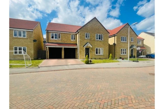 Thumbnail Detached house for sale in Hampstead Gardens, Hull