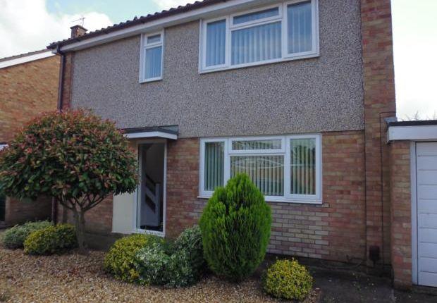 Thumbnail Semi-detached house to rent in Thurlestone Close, Devon Park