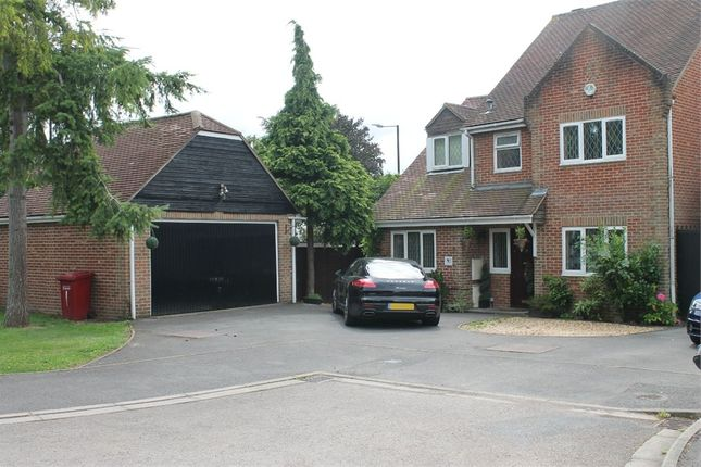 Thumbnail Detached house for sale in Padstow Close, Langley, Berkshire