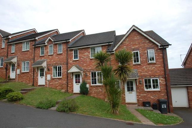 Thumbnail Terraced house to rent in Curlew Close, Torquay