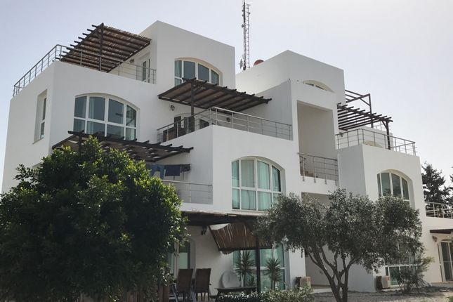 Thumbnail Apartment for sale in Guzelyurt