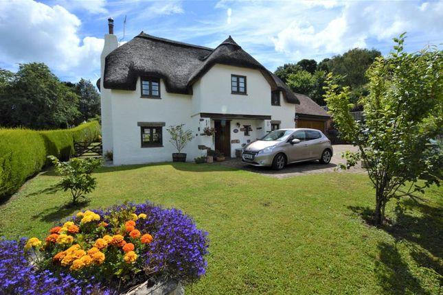 Thumbnail Detached house for sale in Church View, Church Lane, Stokeinteignhead, Newton Abbot