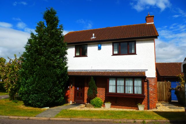 Thumbnail Property to rent in Caray Grove, Creech St. Michael, Taunton