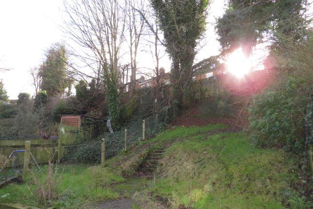 Garden of Burrell Road, Ipswich IP2