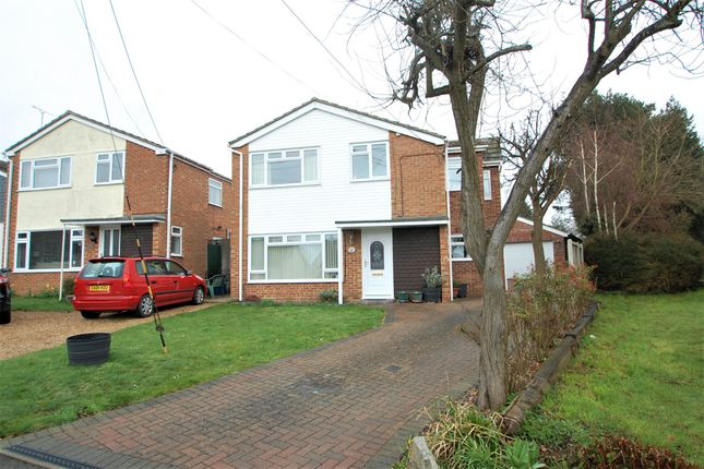 Thumbnail Detached house for sale in Chapel Road, Great Totham, Maldon