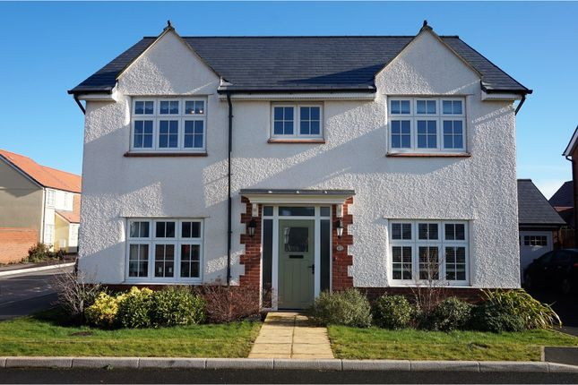 Thumbnail Detached house for sale in Bishops Close, Taunton