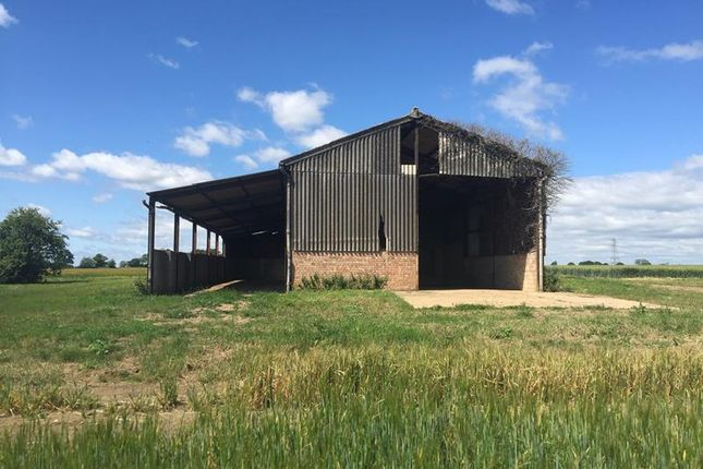 Thumbnail Commercial property for sale in Hill Farm, Barford Road, Wilden, Bedford, Bedfordshire