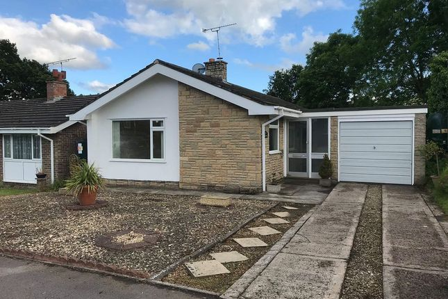 Thumbnail Detached bungalow for sale in St. Andrews Road, Warminster