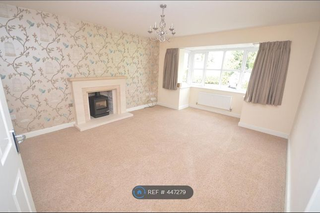 Thumbnail Detached house to rent in Haworth Road, Chorley