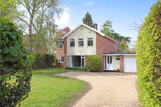 Thumbnail Detached house for sale in Prospect Road, Oulton Broad