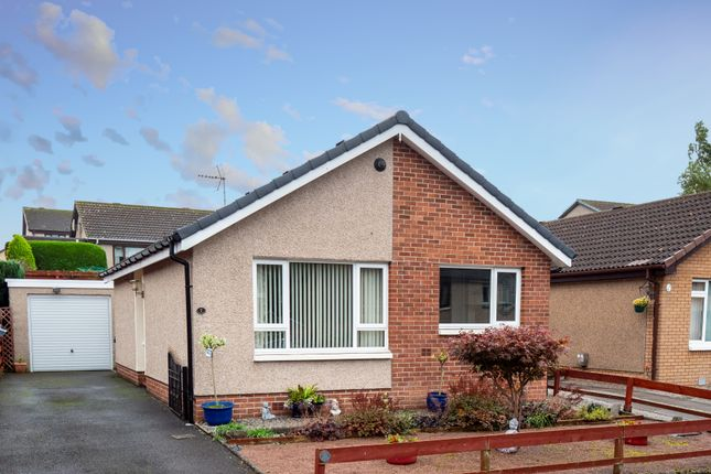 Thumbnail Detached bungalow for sale in Holly Crescent, Dumfries