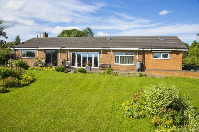 Thumbnail Bungalow for sale in Stonewold, Wood Lane, Horsley Woodhouse, Derbyshire