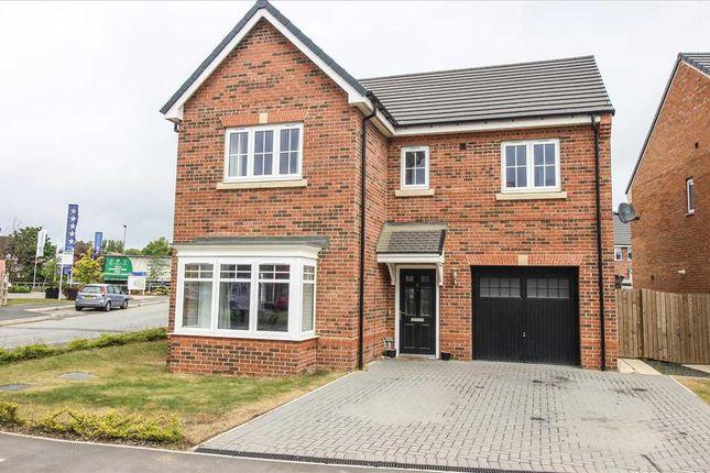 Thumbnail Detached house for sale in Merganzer Crescent, Barley Meadows, Cramlington