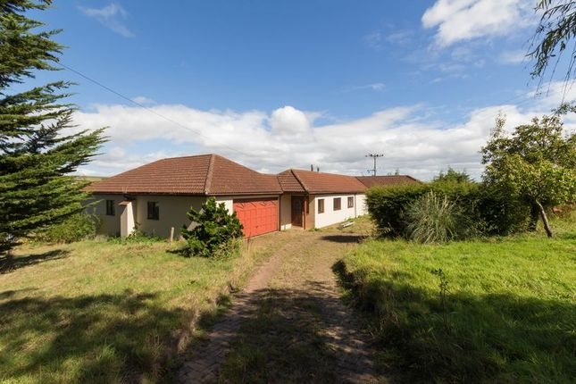 Thumbnail Detached bungalow for sale in Longdown, Exeter