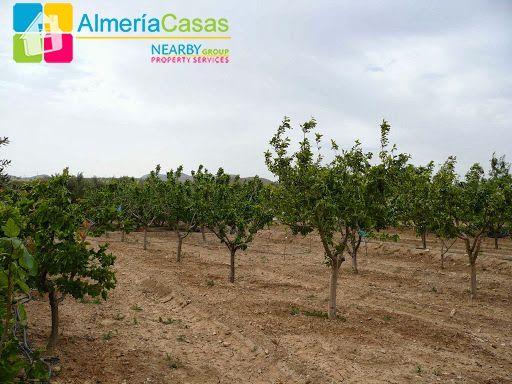 Foto 14 of 04890 Serón, Almería, Spain