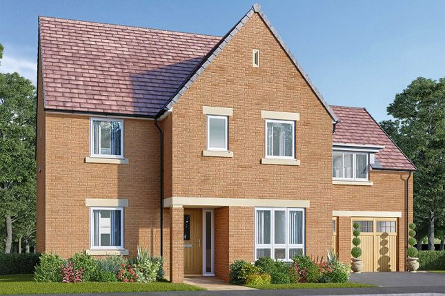 """Thumbnail Detached house for sale in """"The Papplewick"""" at Bede Ling, West Bridgford, Nottingham"""