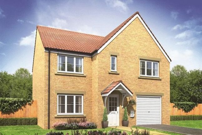 Thumbnail Detached house for sale in The Warwick - Kingsbury Meadows, Wakefield