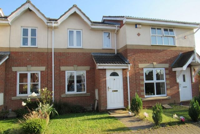 Thumbnail Terraced house to rent in Buckingham Grove, Scartho Top, Grimsby