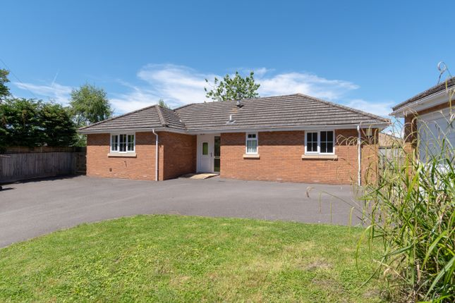 Thumbnail Detached bungalow to rent in Milbourne, Malmesbury