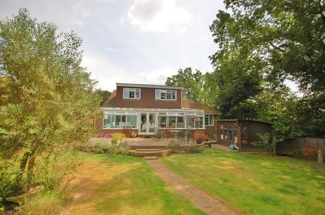 Thumbnail Bungalow for sale in Eight Bells Close, Buxted, Uckfield, East Sussex
