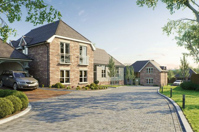 Thumbnail Detached house for sale in Forest Walk, The Glen, Pamber Heath