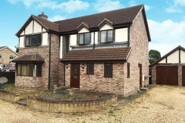 Thumbnail Detached house to rent in Station Road, Lakenheath, Brandon
