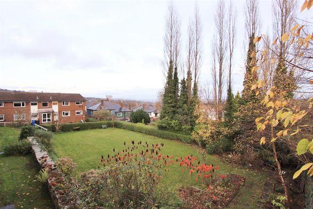 Communal Garden of Greystones Road, Sheffield S11
