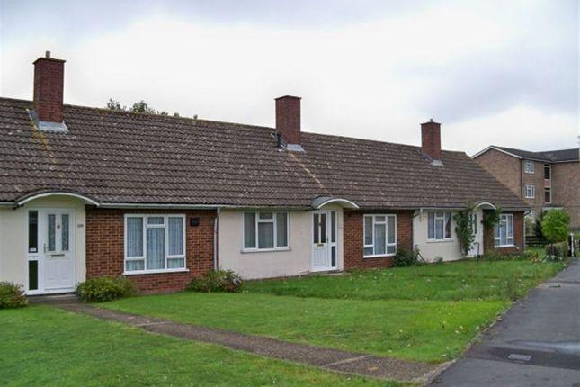 Thumbnail Bungalow to rent in St. Michaels Road, Basingstoke