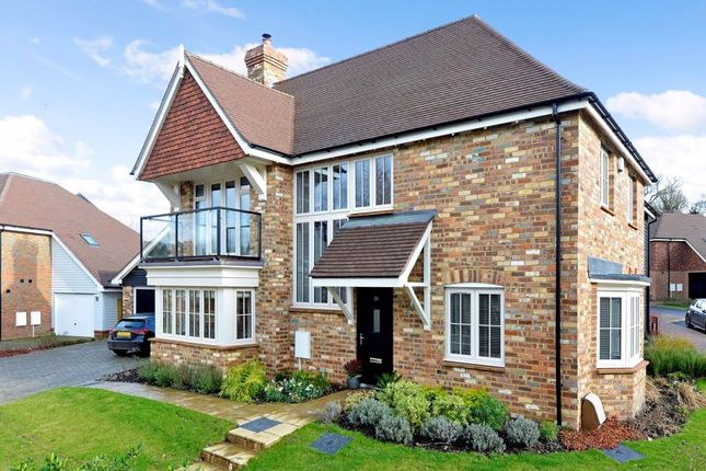 Thumbnail Detached house for sale in Cherry Tree Lane, Ewhurst, Cranleigh
