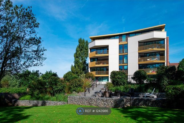 Thumbnail Flat to rent in Bishops Wood Court, London