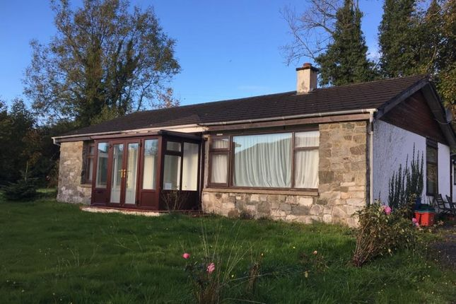 Thumbnail Detached bungalow to rent in Llanwrthwl, Llandrindod Wells