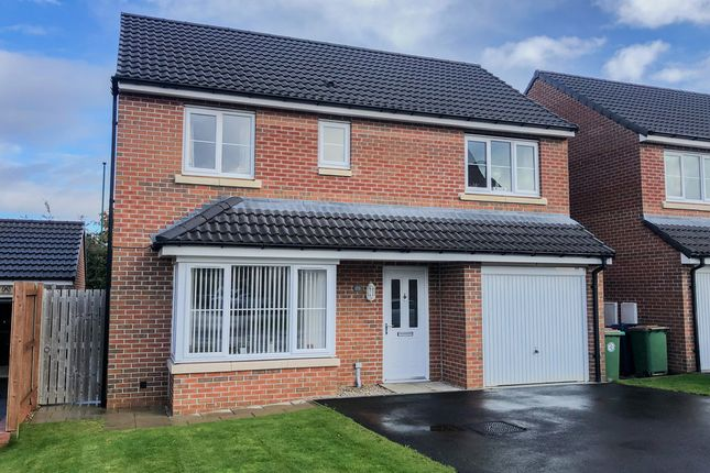 Thumbnail Detached house to rent in Providence Drive, Guisborough