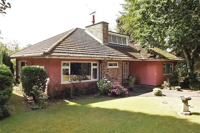 Thumbnail Detached bungalow for sale in Rattlers Road, Brandon, Suffolk