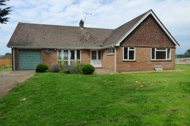 Thumbnail Detached bungalow to rent in Toddington Lane, Wick, Littlehampton