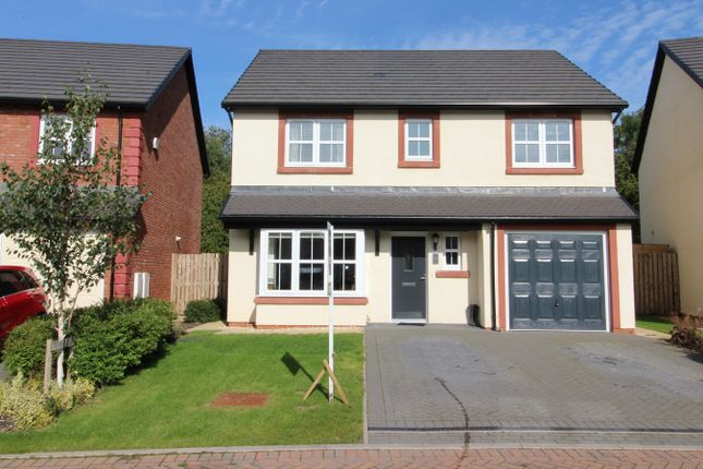 Thumbnail Detached house for sale in Jacobite Gardens, Clifton, Penrith