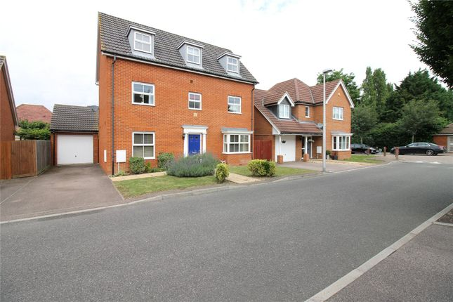 Detached house to rent in Fitzgilbert Close, Gillingham, Kent