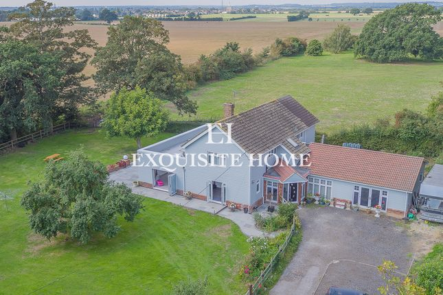 Thumbnail Detached house for sale in Stambridge Road, Stambridge, Rochford