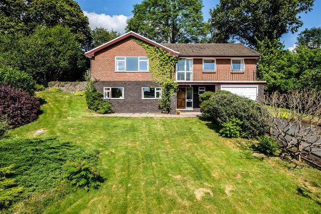Thumbnail Detached house for sale in Park Lane, Llandrindod Wells
