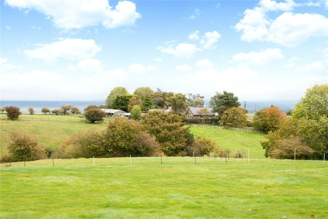 Thumbnail Equestrian property for sale in Pant Y Gof, Halkyn, Holywell