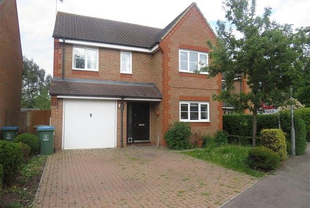 Thumbnail Detached house to rent in Dixon Close, Aylesbury