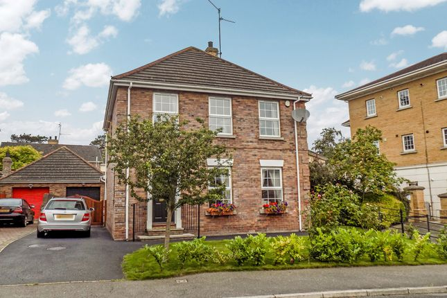 Thumbnail Detached house to rent in Summerhill, Banbridge