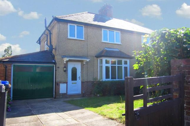 Thumbnail Semi-detached house to rent in St. Gregorys Avenue, Salisbury