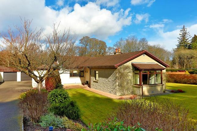 Thumbnail Bungalow to rent in Banchory