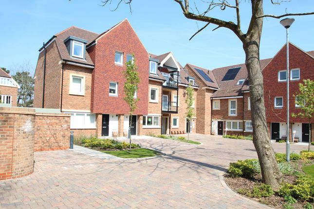 Thumbnail Terraced house for sale in Ash Tree Close, Orpington, Orpington
