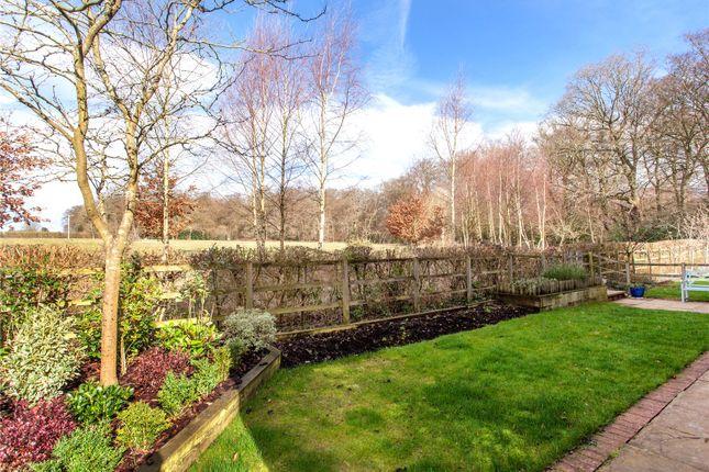 Side Garden of Hazel Grove, Kingwood, Henley-On-Thames, Oxfordshire RG9